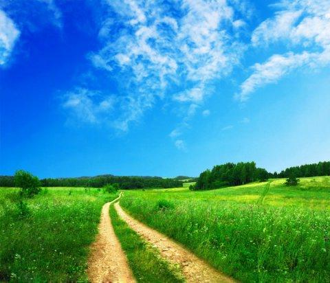 【同题诗】一条小路的尽头